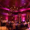 pink-LED-uplight-rental